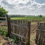 Сельская жизнь. Дияшево 48