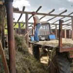 Сельская жизнь. Дияшево 49