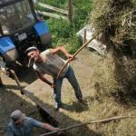 Сельская жизнь. Дияшево 59