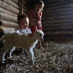 Сельская жизнь. Дияшево 087