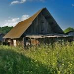 Сельская жизнь. Дияшево 148