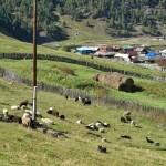 Село Кага Белорецкого района Башкирии 14