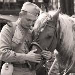 Праздник в честь 70-летя Победы в Великой Отечественной войне 43