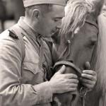 Праздник в честь 70-летя Победы в Великой Отечественной войне 45