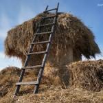 Село Андреевка Аургазинского района. Стог сена