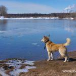Весна, ледоход на реке 23