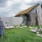 Село Ахлыстино Кушнаренковского района РБ.45
