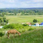 Село Ахлыстино Кушнаренковского района РБ.78