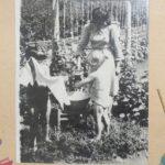 История детского сада 19