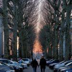 Антверпен (Бельгия)029