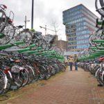 Роттердам 067